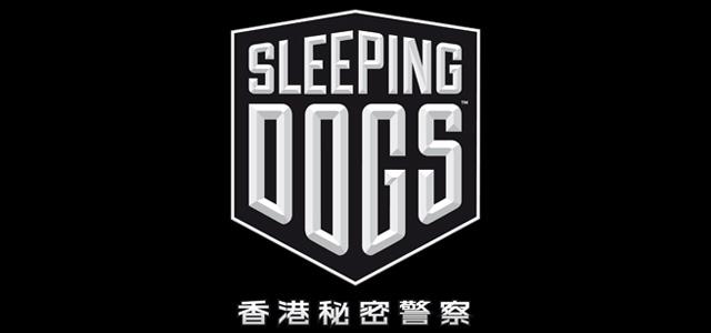 20120531_SD_logo.jpg